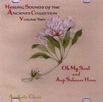 Aap Sahaee Hoa - CD
