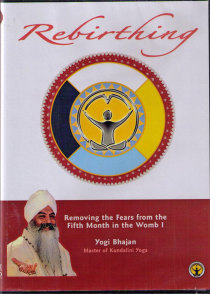 Rebirthing Vol 13 - Removing the Fears from the Fifth Month 1, DVD