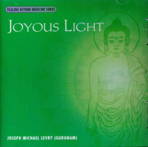 Joyous Light - CD av Joseph Michael Levry