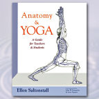 Anatomy & Yoga
